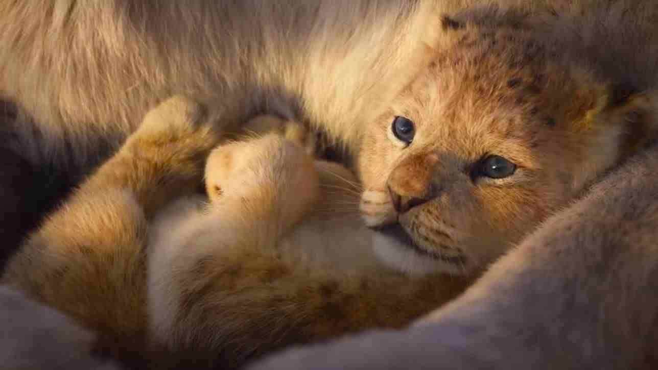 The Lion King 2019 Full Movie Download