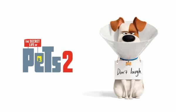 A Secret Life Of Pet 2 Full Movie Download