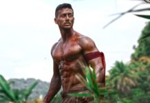 Baaghi 2 Box Office Collection,
