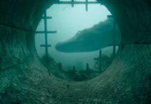 Crawl Full Movie Download Bolly4u